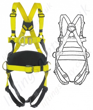 P+P Safety Fall Arrest Positioning Harness (Pammenter & Petrie) EN361 and EN358