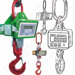 Crane Weighers and Load Indicators 1 - 35 tonnes