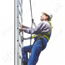 Electric Powered Climbing Assistant for Vertical Ladders