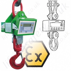 LiftingSafety Load Indicators and Crane Weighers