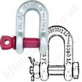 US Fed Spec Alloy Steel Dee Shackles (D shackles)