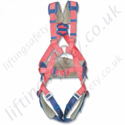 Miller AGU 300 Harness - S, M and L
