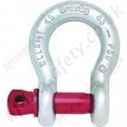 Crosby G209 Screw Pin Anchor Bow Lifting Shackles (Omega Shackles) - Range from 330kg to 55000kg