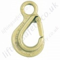 Eye Chain Hook with Latch