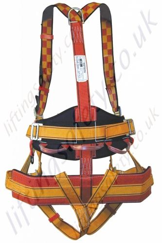 Protecta Tree Surgeons Harness (rear view)