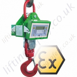 LiftingSafety Suspended Crane Scales - Range from 6000kg to 35,000kg