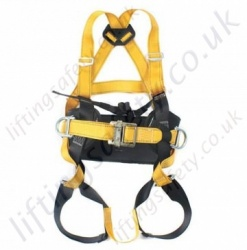 Ridgegear RGH3 Three Point Work Positioning Safety Harness with Rear 'D' Ring.