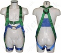 "Abtech ""AB20SL"" Two Point Harness with Rear 'D' Ring and Soft Thoral Loops"