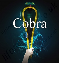 """Cobra"" Compact Round Lifting Slings (endless lifting slings). Conforms to BS EN 1492-2 - Range from 1000kg to 5,000kg."