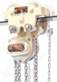 Tiger Corrosion Resistant Chain Hoist and Geared Trolley Combination - Range: 500kg to 30,000kg