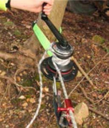 Rigger Winch 200 Anchored To A Tree