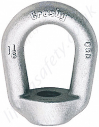 Crosby M4028 Eye Nuts - Range from 240kg - 18,140kg